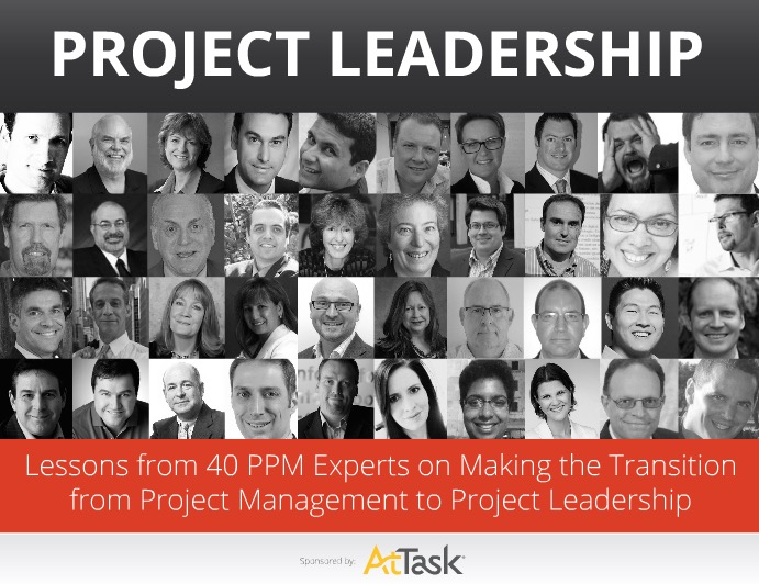 Project Leadership — Lessons from 40 PPM Experts